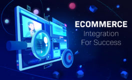 Ecommerce Integration for Success